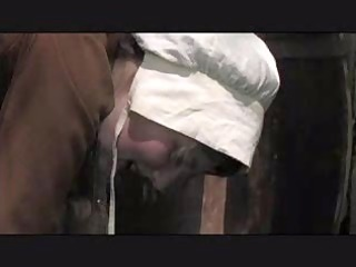 puritan thrashing